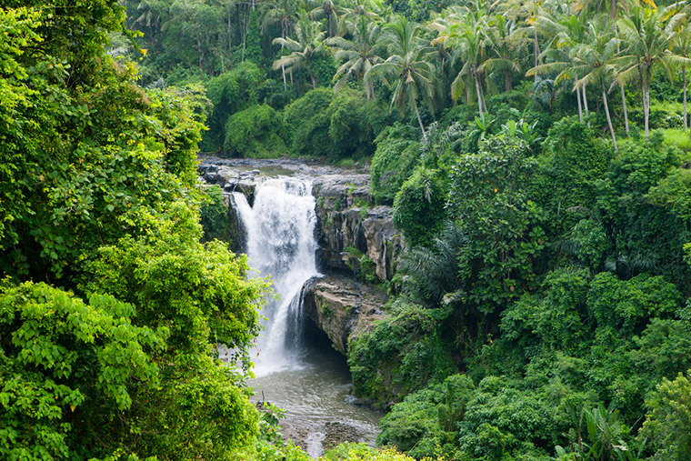 Sri Lanka is one of the smallest but biologically diverse countries in Asia