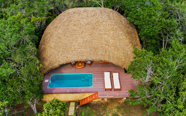 We specialise in sri lanka honeymoons